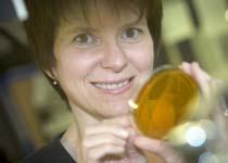Karen Arndt, PhD